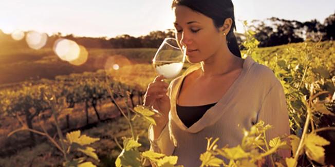 Κρασί Οίνος